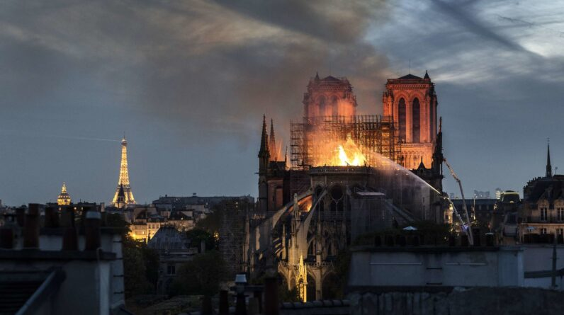 Best Air Fryer – Lead from the 2019 Notre-Dame Cathedral Fire Detected in Paris's Beehives
